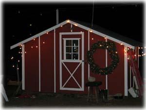 Georgeu0027s U Cut Christmas Tree Farm In Azalea, Oregon